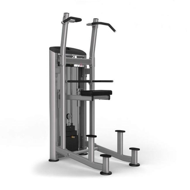 Element Platinum Weight Assisted Chin/Dip Combo w/ 200lb Stk