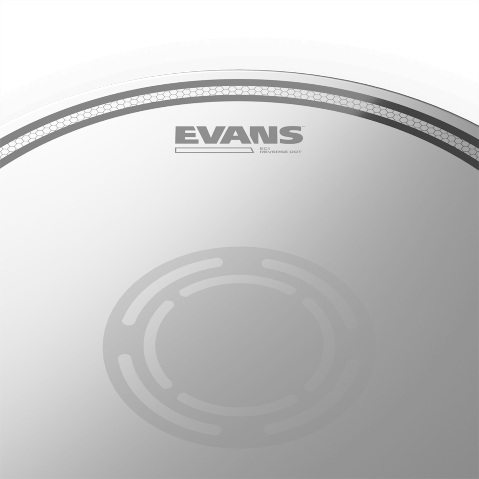 "Evans EVANS 14"" EC1 SNARE W/ REVERSE DOT B14EC1RD"