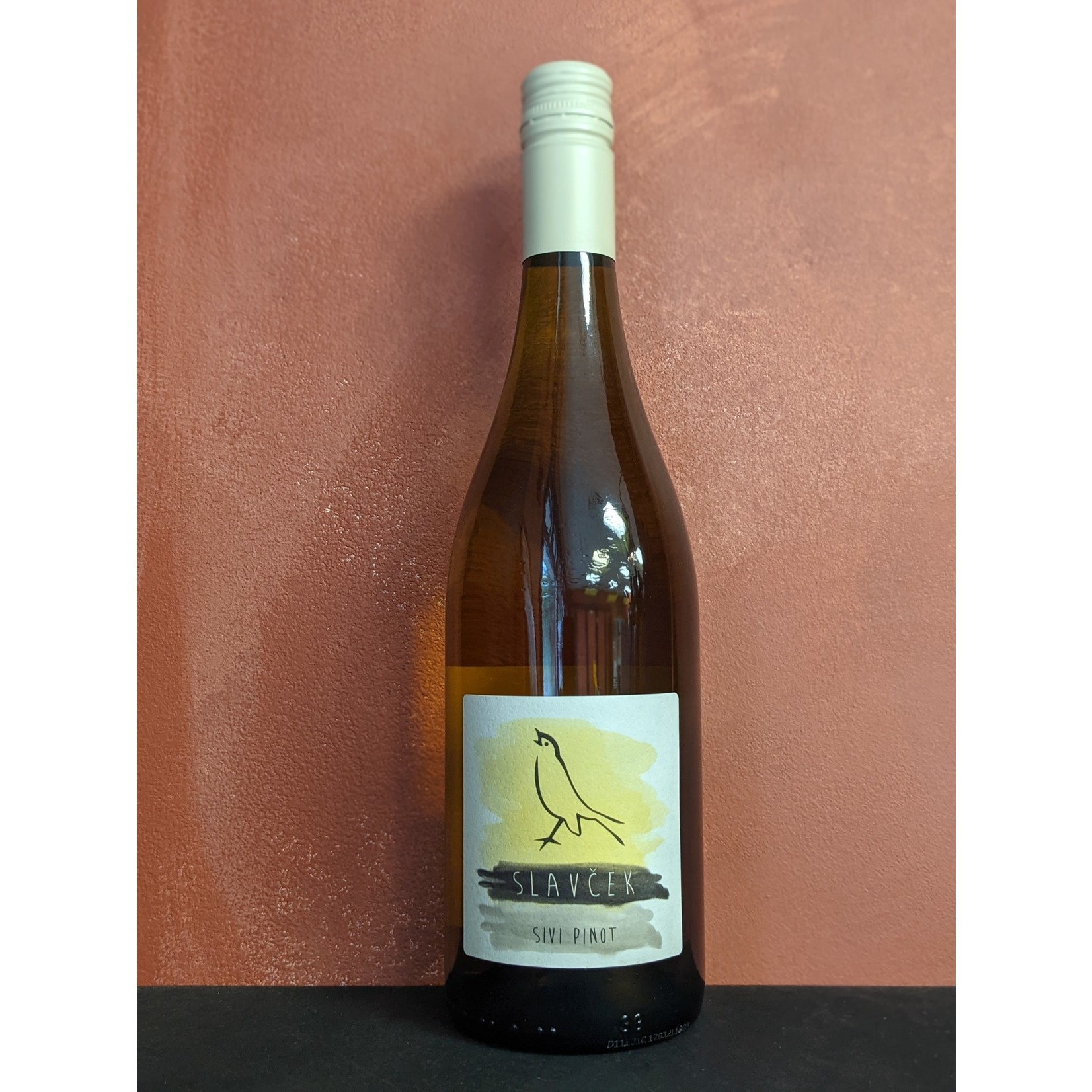 2020 Sivi Pinot, Slavcek