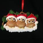 Owl Family 3