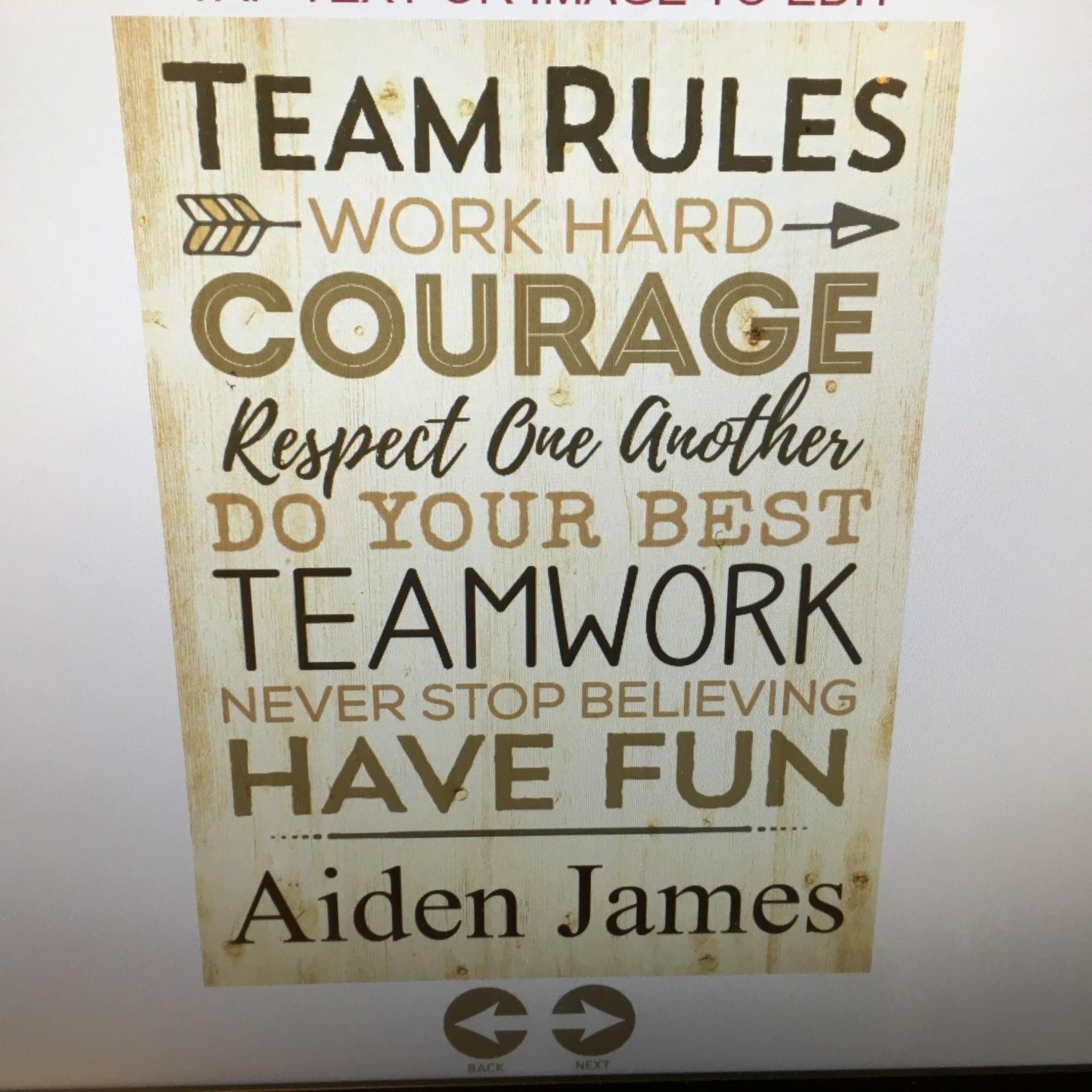 """Plaque - Team Rules 12x16"""""""