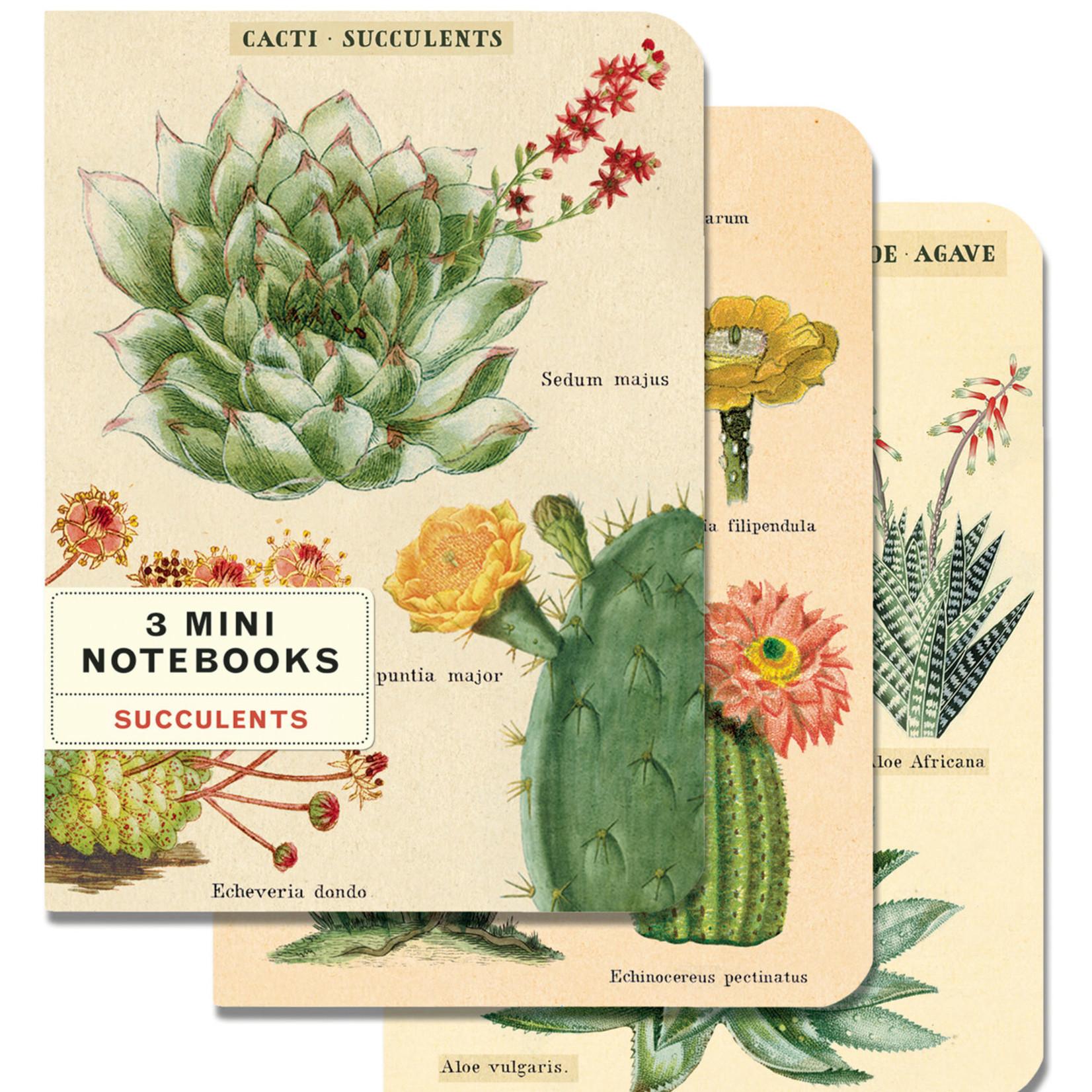 Cavallini Mini Notebook Set (3)