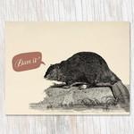 Beaver Dam Card