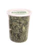 From The Field From the Field Catnip Buds Tub 1 oz