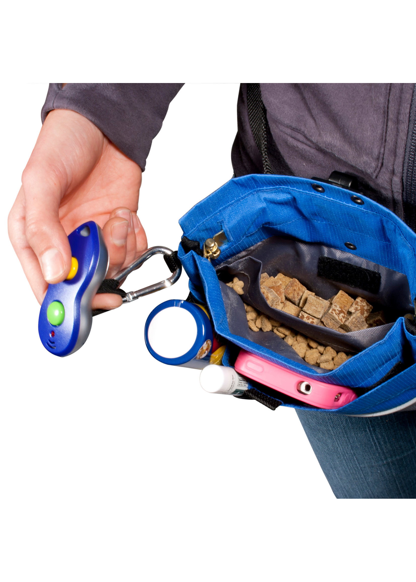 PetSafe PetSafe Treat Pouch Blue