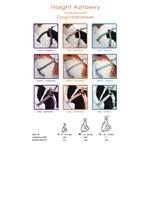 Goli Design Goli Haight Ashbury Dog Harness