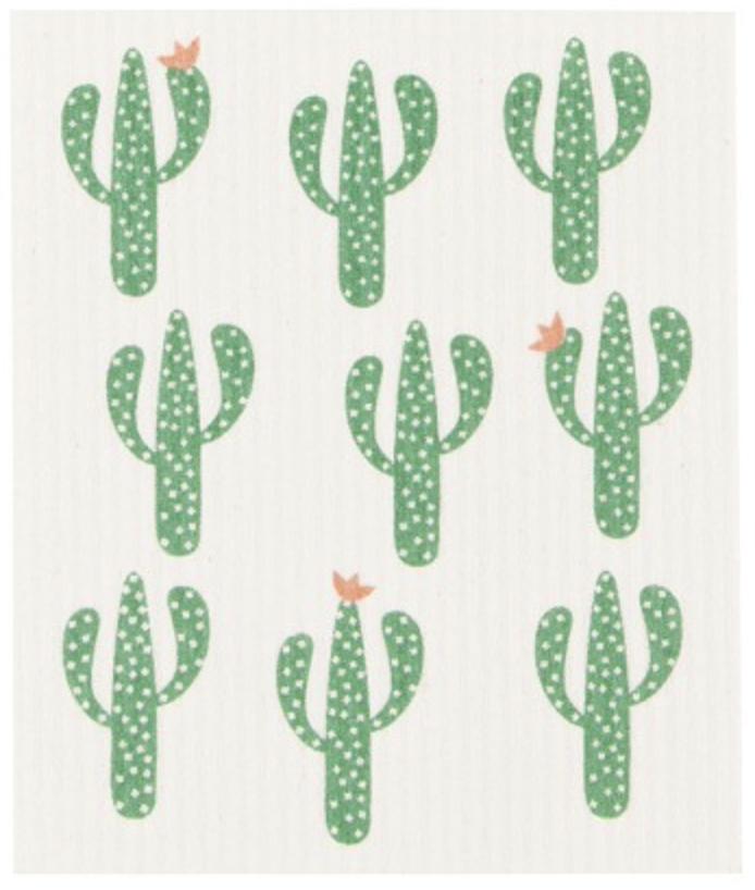 Cacti-1