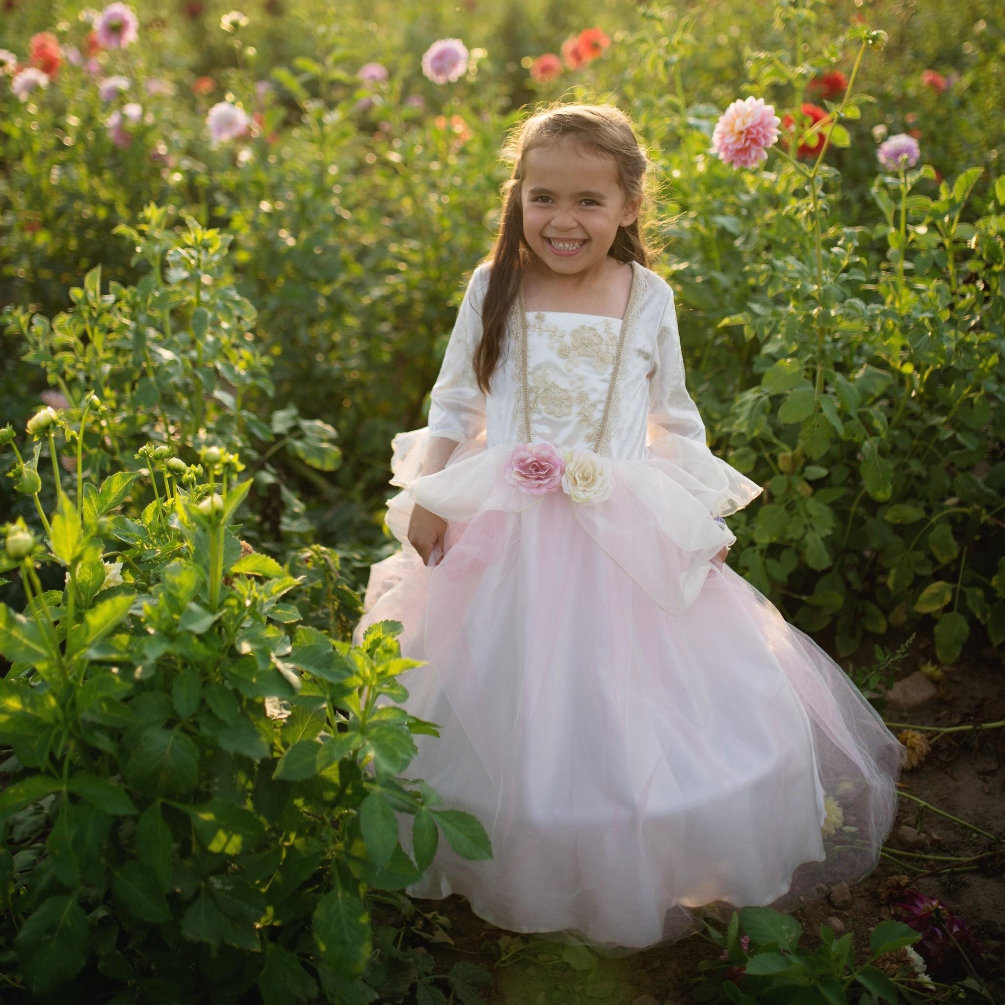 Golden Rose Princess Dress-2