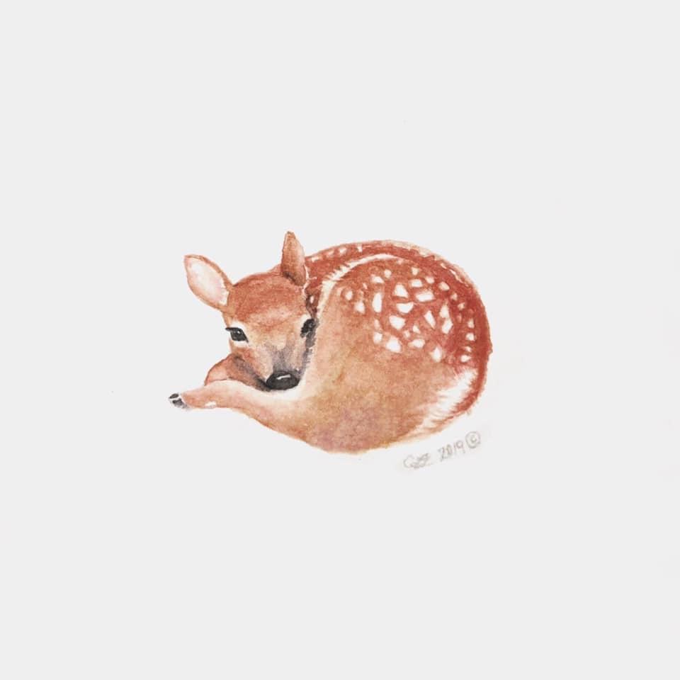 Watercolour Fawn (5x5 Card/Frameable Art Print)-1