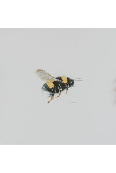 Watercolour Bumble Bee (5x5 Card/Frameable Art Print)