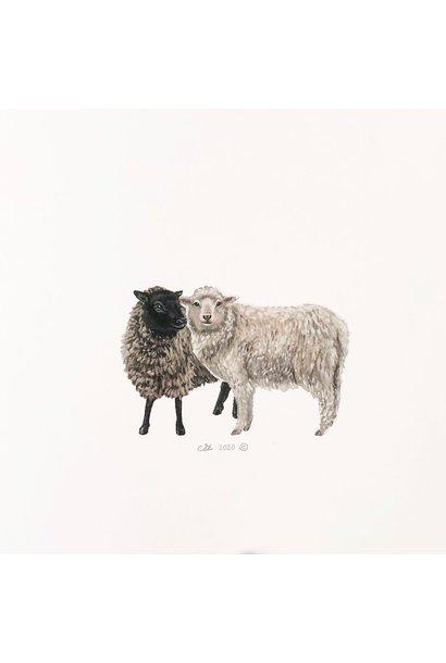 Watercolour Sheep (5x5 Card/Frameable Art Print)