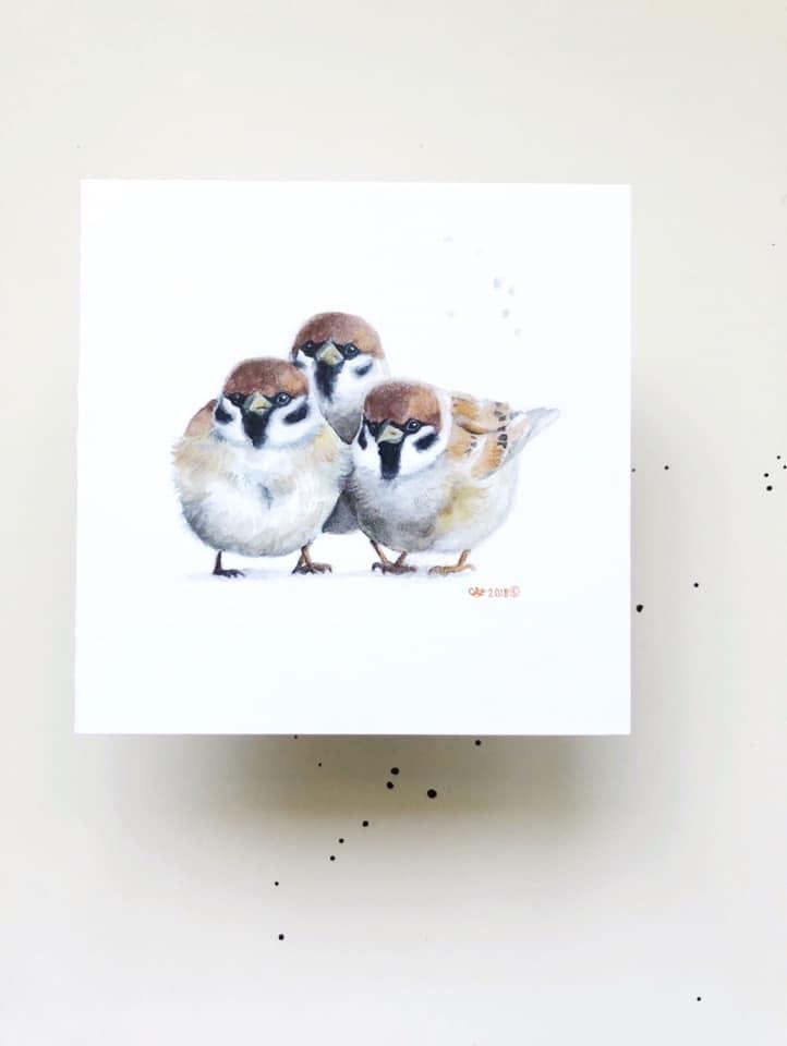 Watercolour Sparrows (5x5 Card/Frameable Art Print)-1