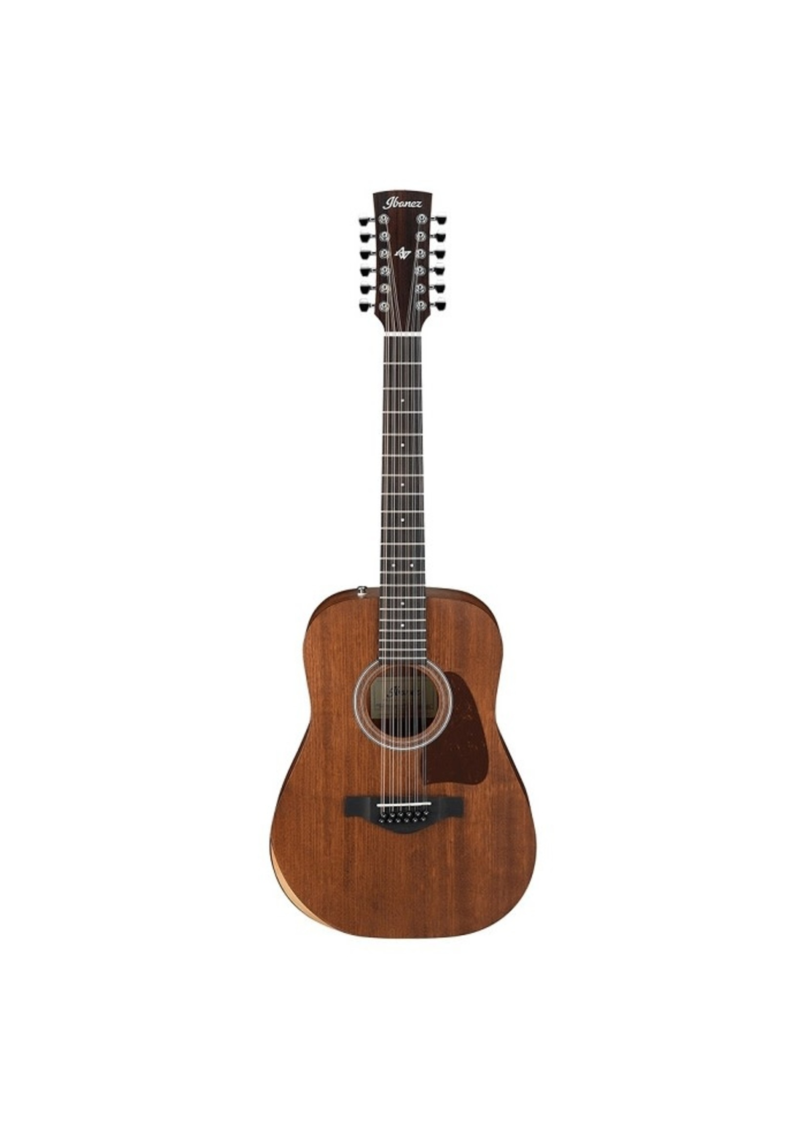 IBANEZ Ibanez Artwood 12-String Acoustic Guitar w/Gigbag