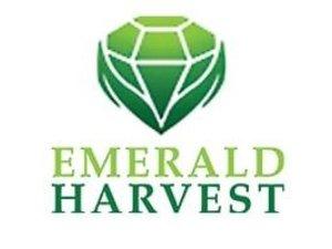 Emeral Harvest
