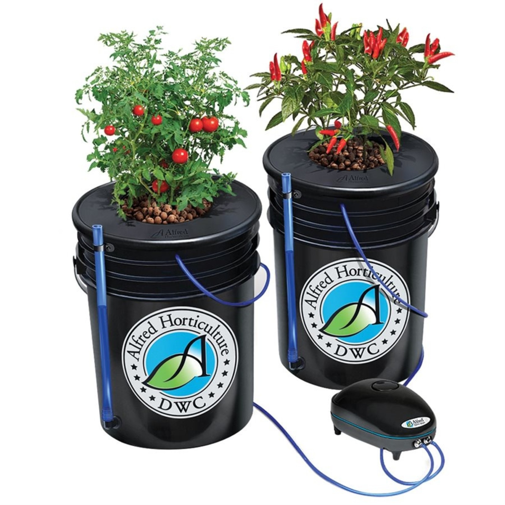 Alfred Alfred DWC Grow Kit