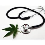Medical Marijuana licence