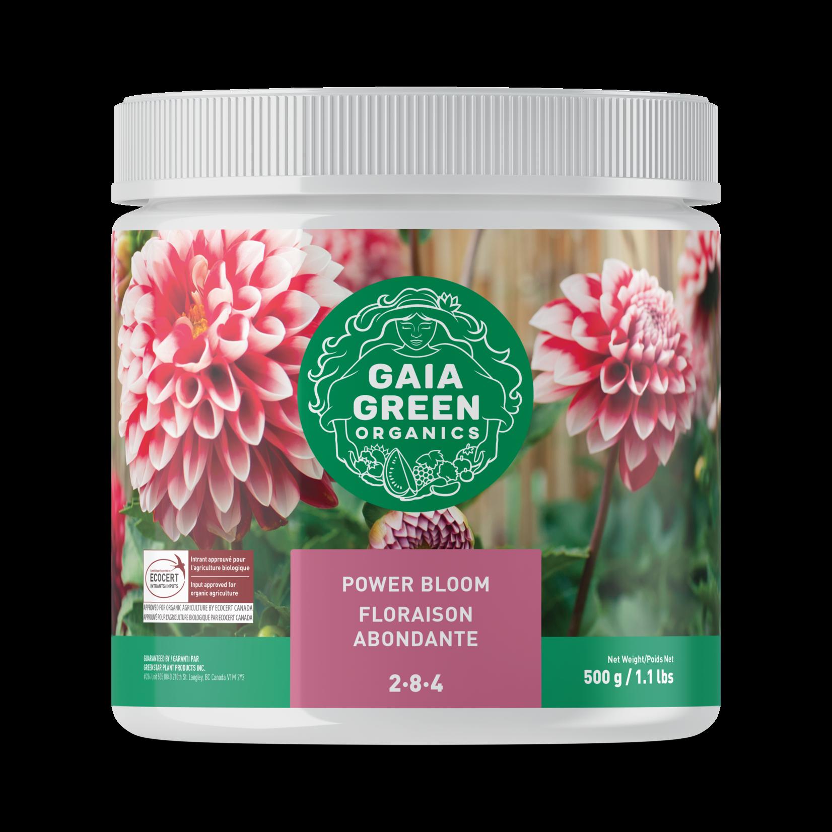 gaia green Gaia Green Power Bloom