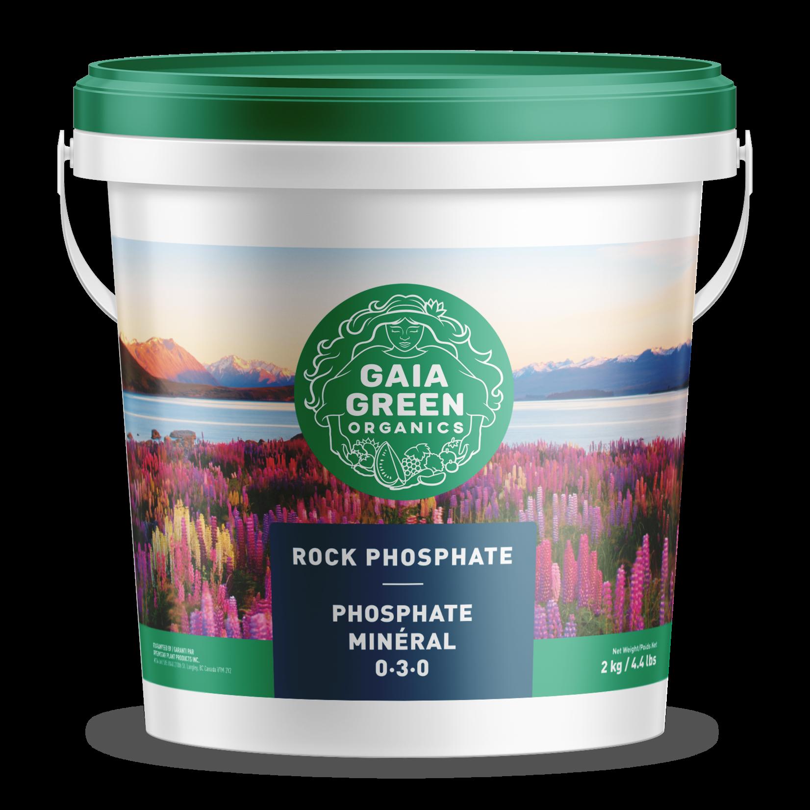 gaia green Gaia Green ROCK PHOSPHATE 2KG