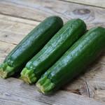 Tourne-Sol Dark Green Zucchini