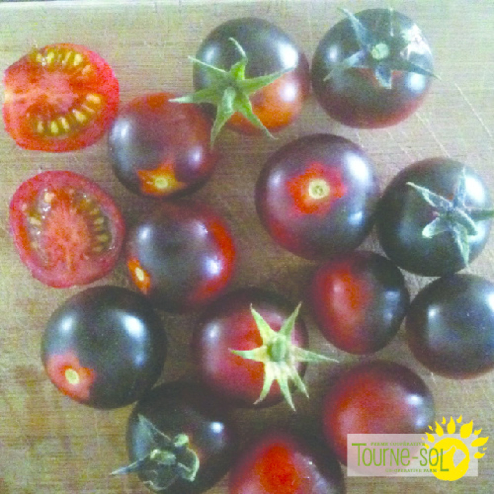 Tourne-Sol Dancing with Smurfs blue cherry tomato