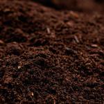 Compost Crevettes Bio - 1vg