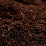 Organic Shrimp Compost - 1yd