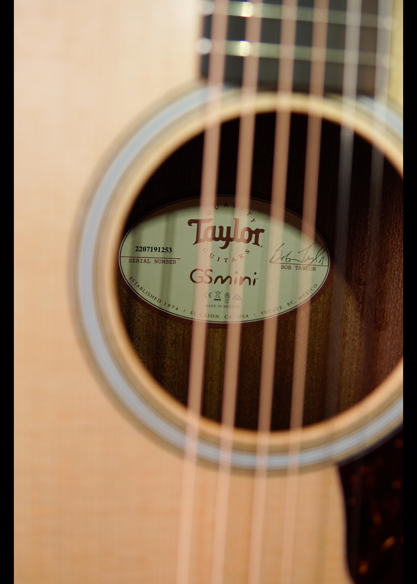 Taylor Taylor GS Mini E Rosewood