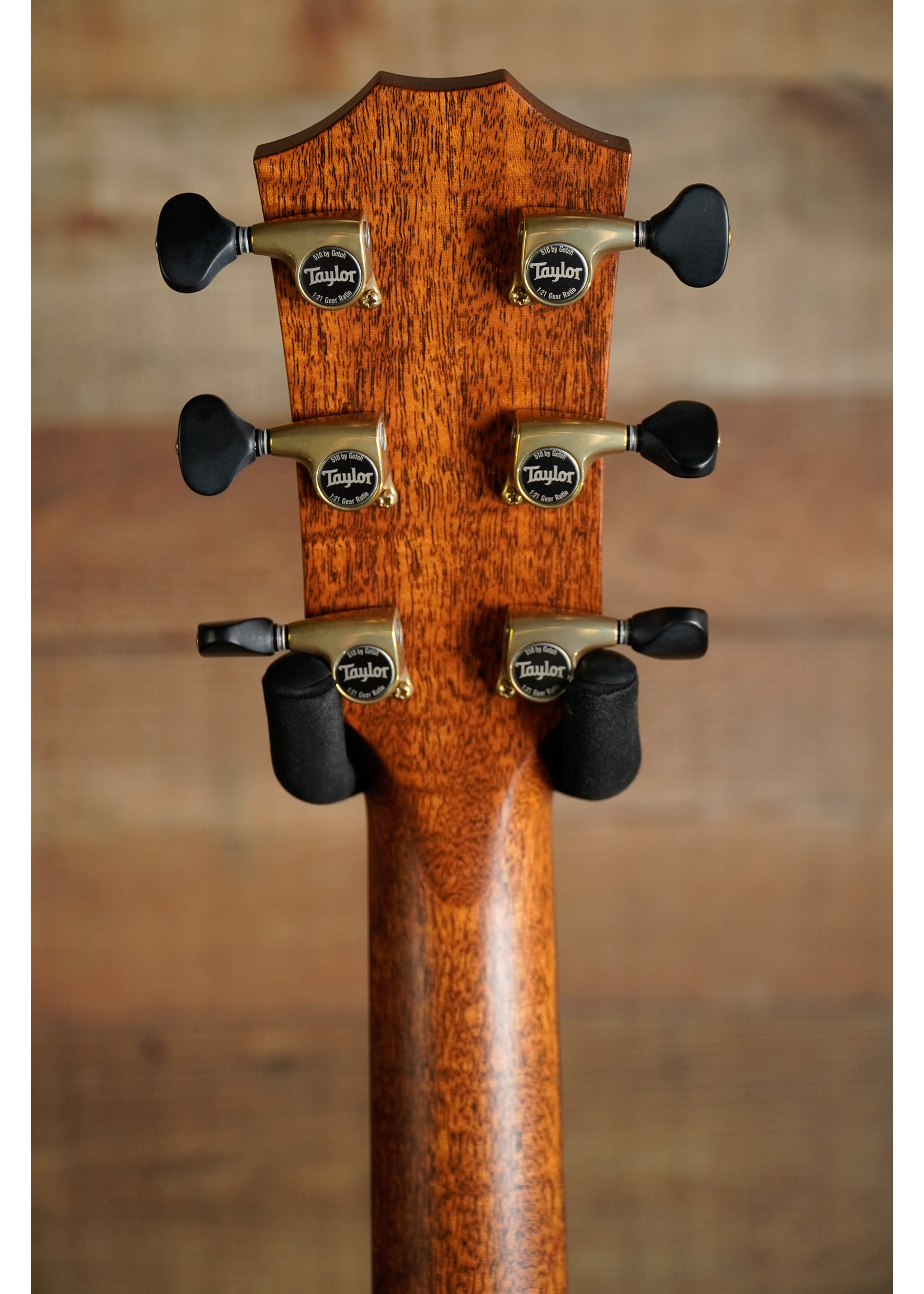 Taylor Taylor Custom #5 NAMM Exclusive Only 30 Available WorldWide