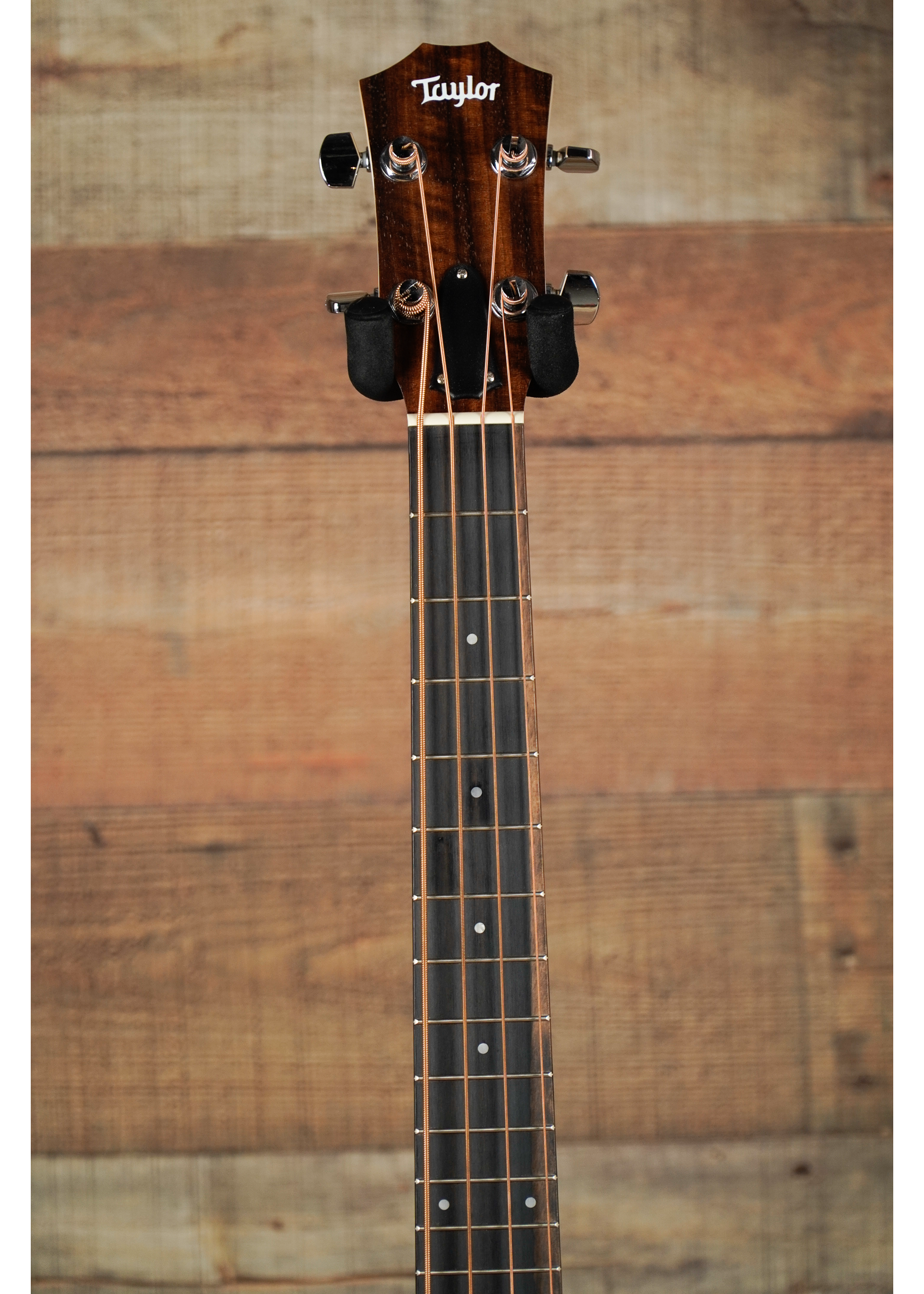 Taylor Taylor GS Mini Bass Maple