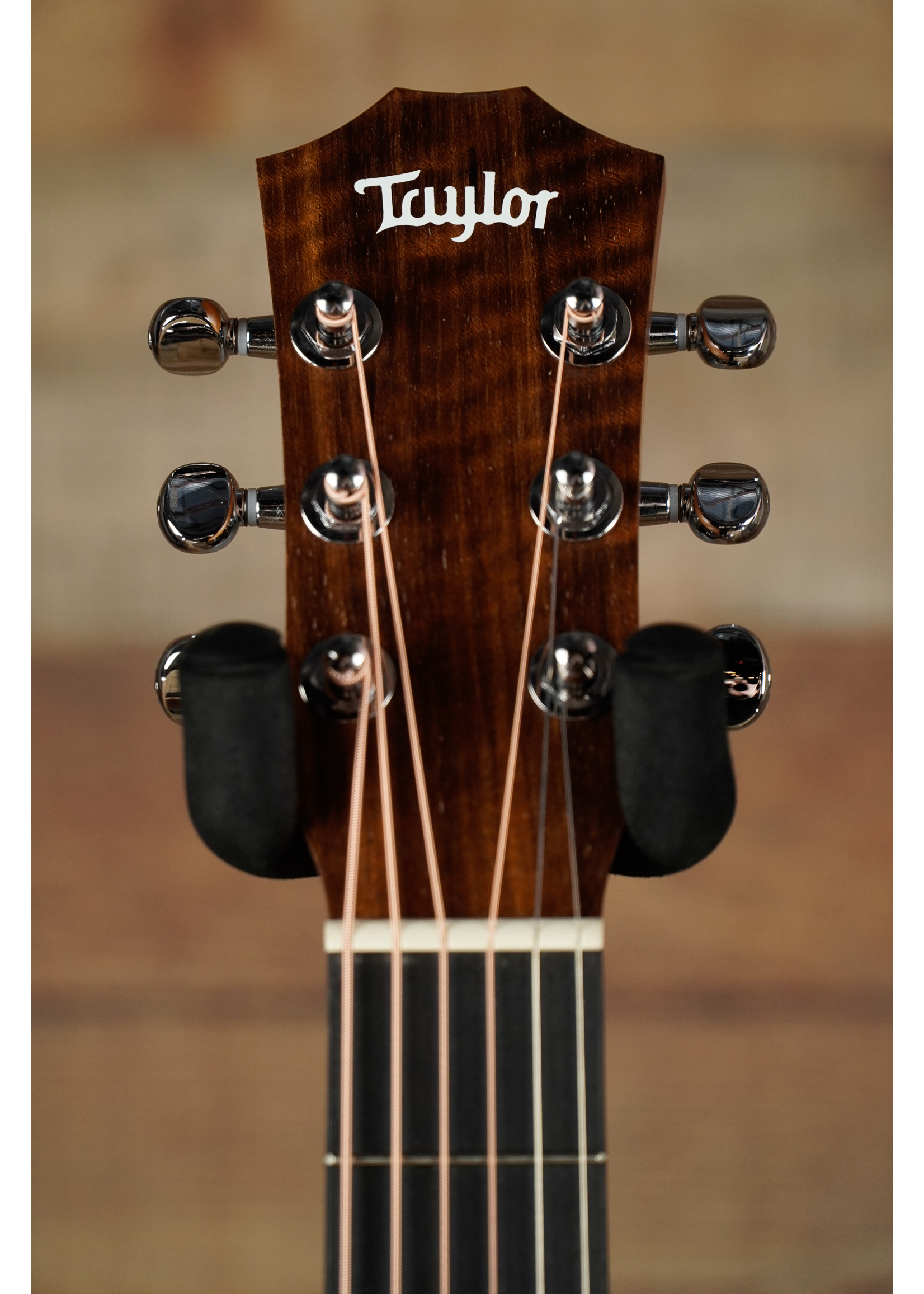 Taylor Taylor  BT1e Natural