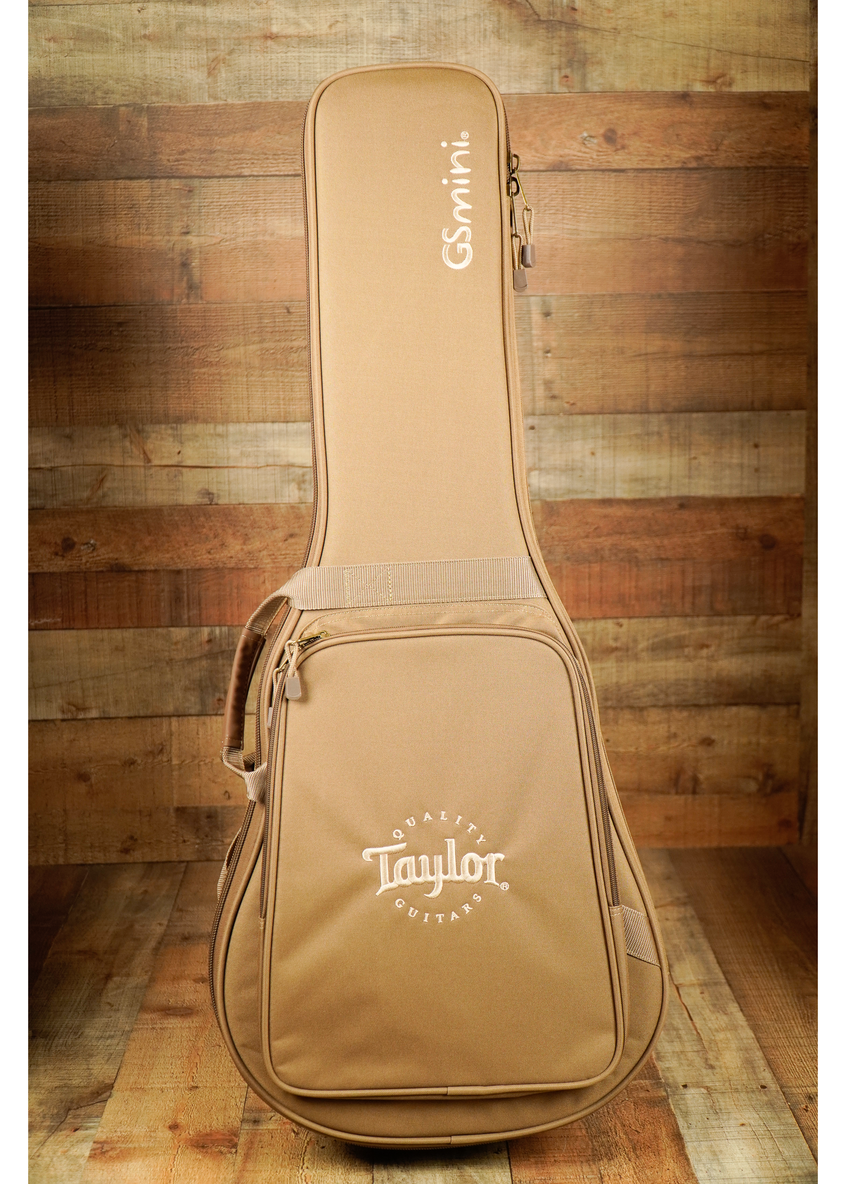 Taylor Taylor GS Mini Mahogany
