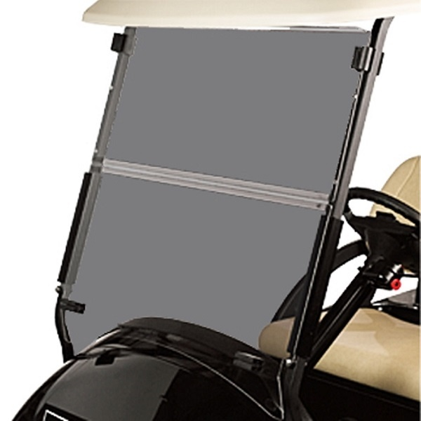 Tinted Windshield