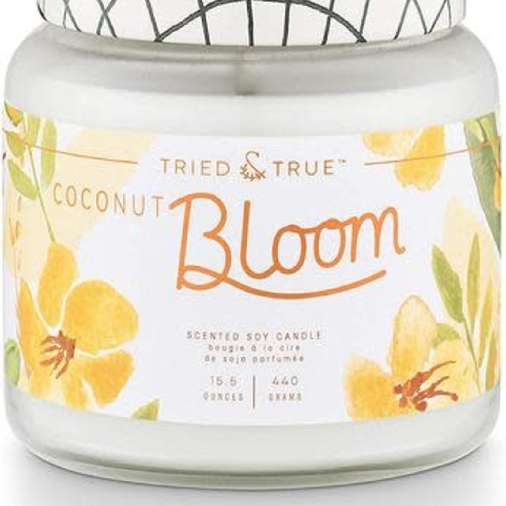 illume Tried & True Candle Large 15.5oz