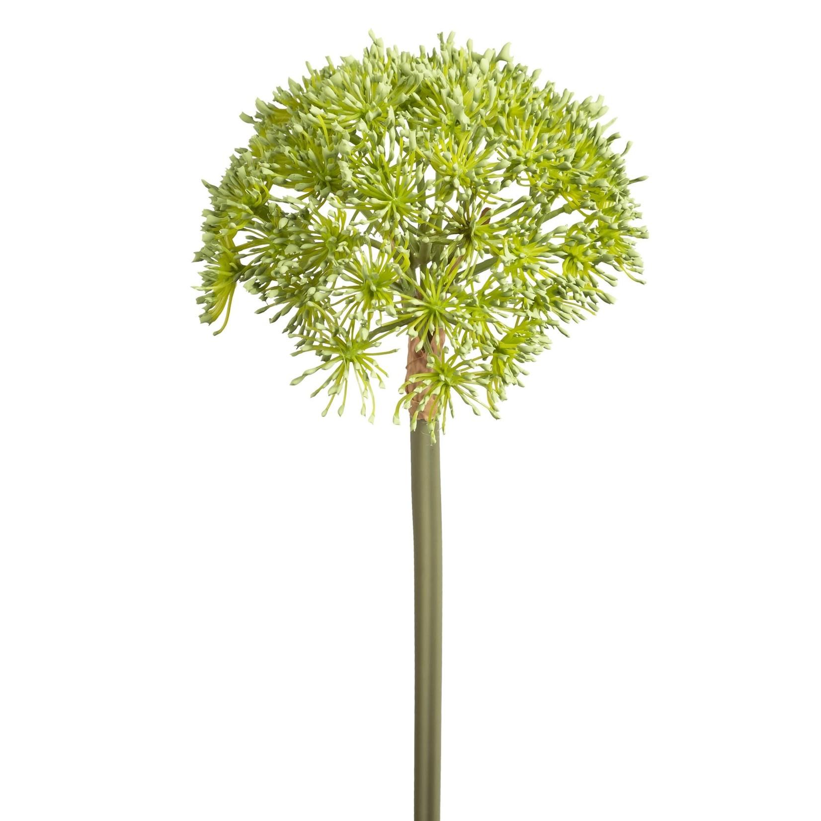 Torre & Tagus Buddleia Bloom 26in Stem Green