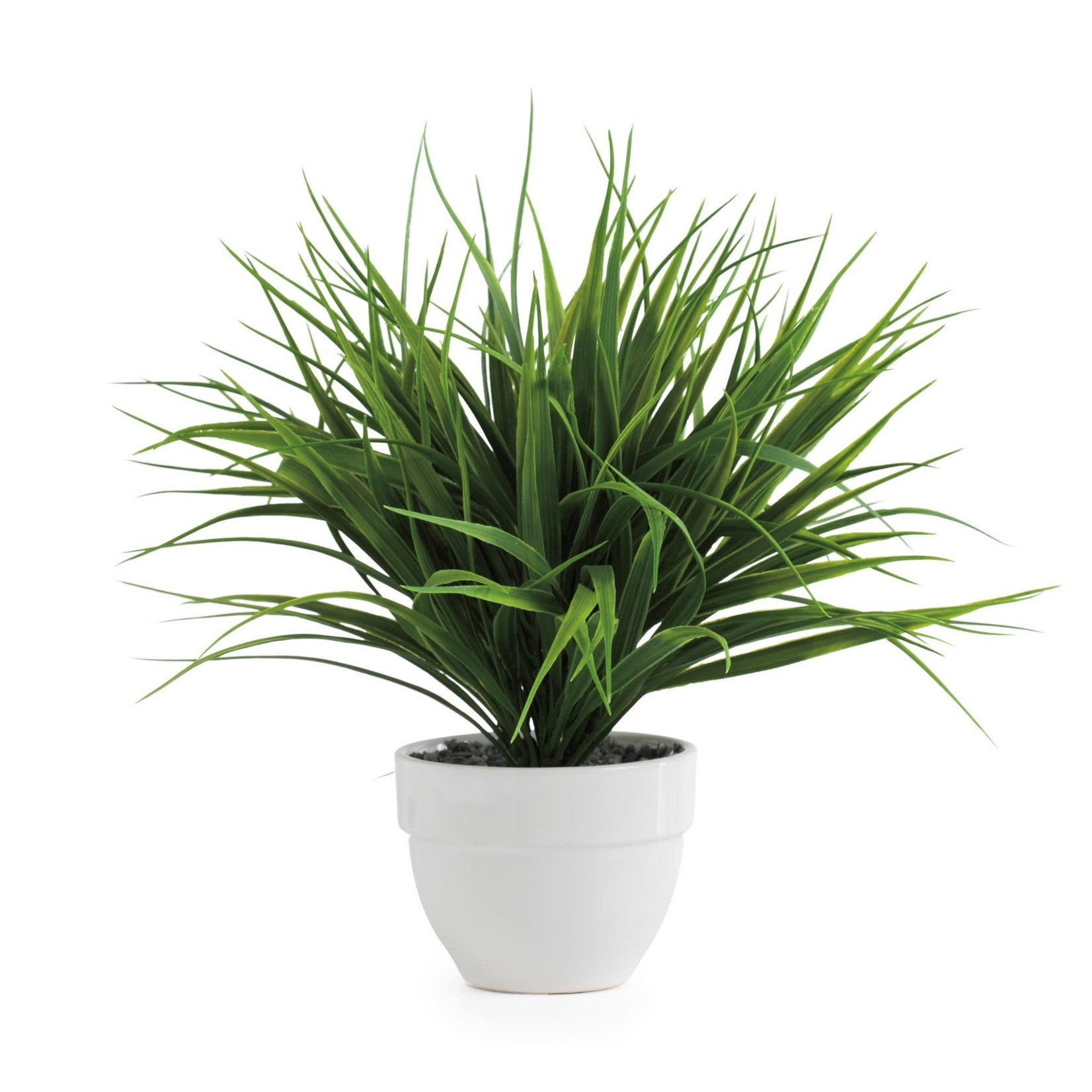 Torre & Tagus Grass Potted Plant
