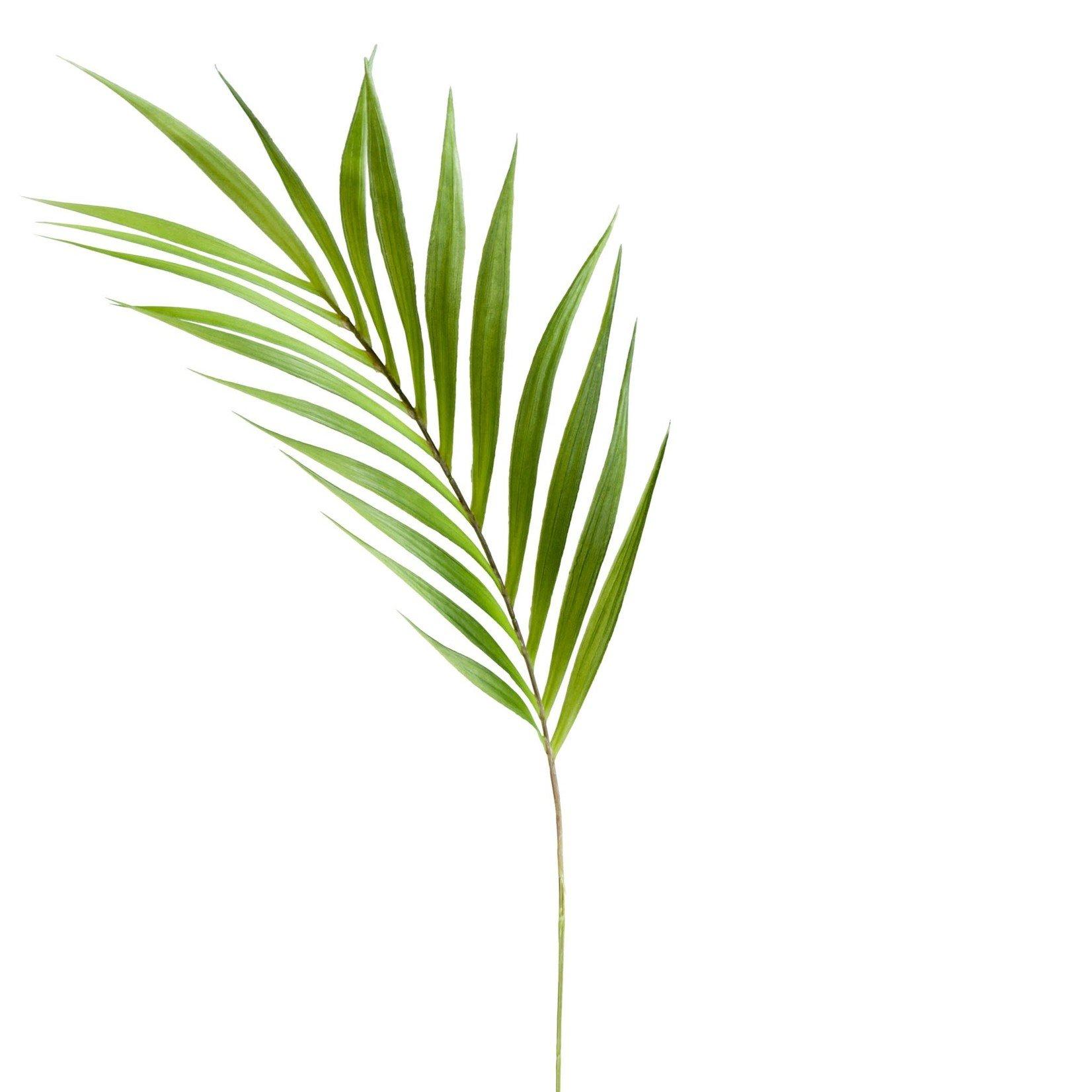 Torre & Tagus Palm Leaf 36in Stem 902705