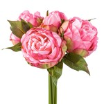 Torre & Tagus Blushing Peony 5 Bloom Bouquet