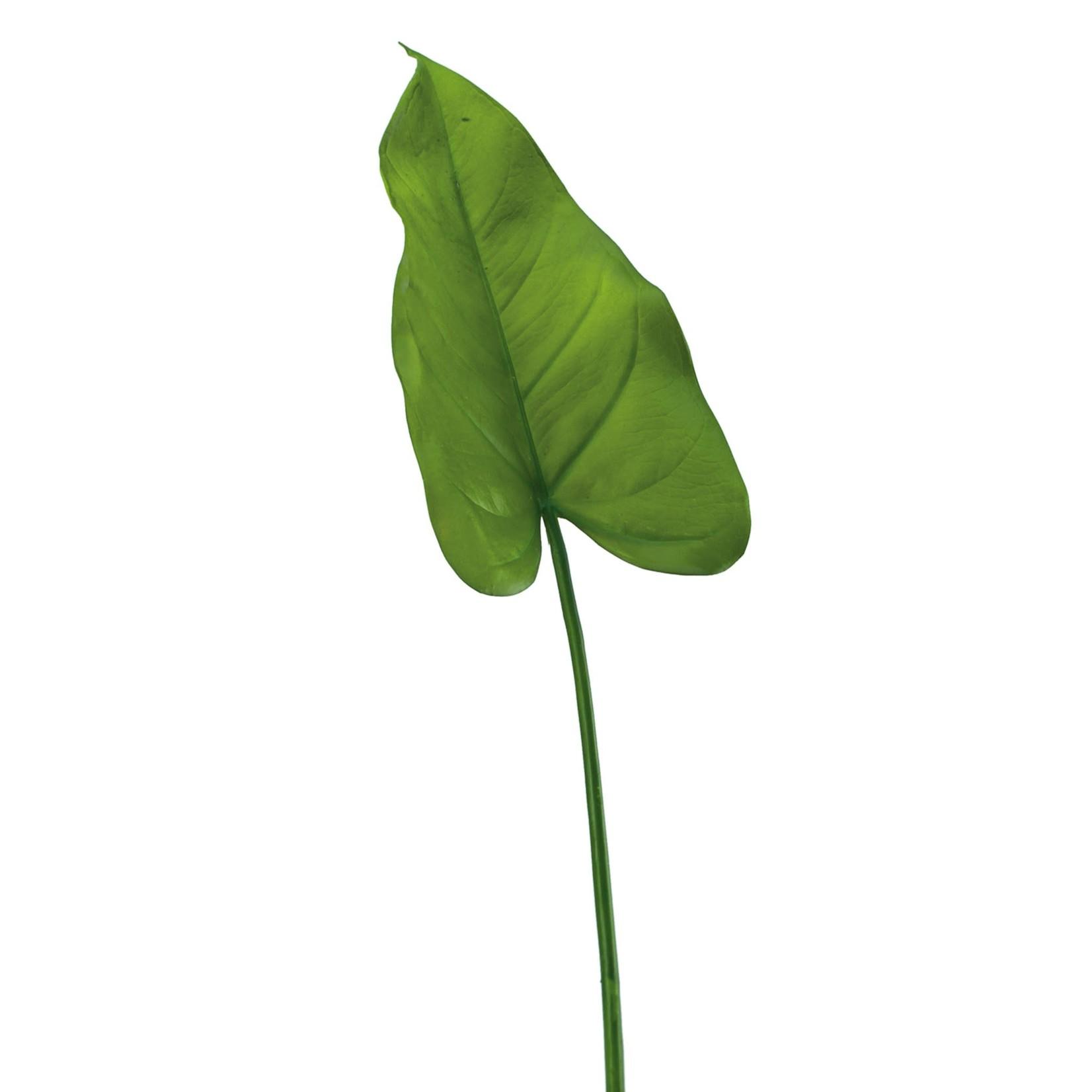 """Torre & Tagus Calla Lily Leaf 26"""" Stem"""