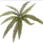 """Torre & Tagus Fern 20.5"""" Multi Leaf Bush"""