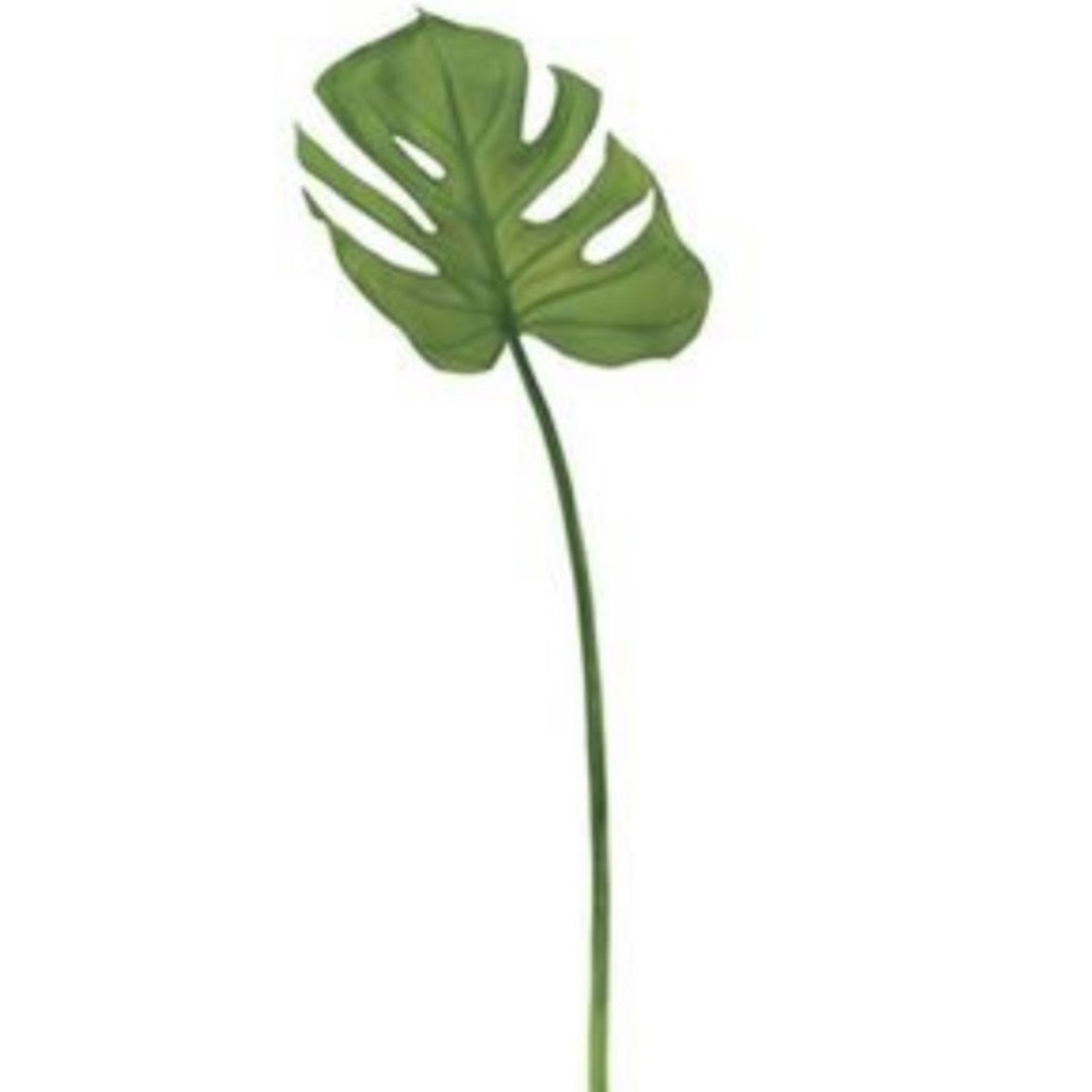 """Torre & Tagus Monstera Leaf 26.5"""" Stem"""