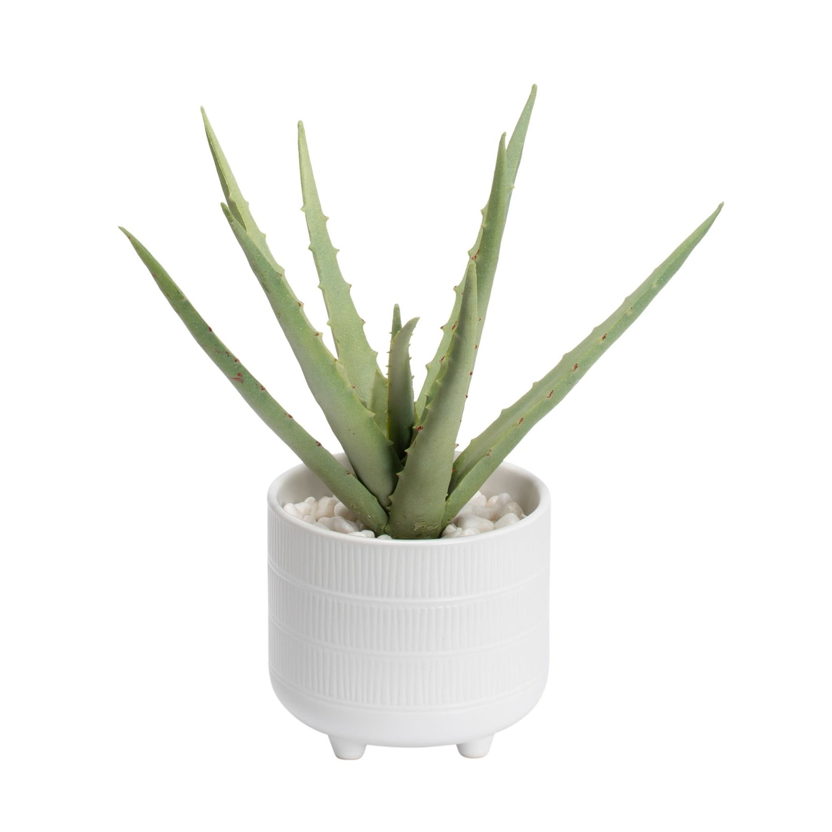 Torre & Tagus Riviera Ceramic Potted Faux Aloe