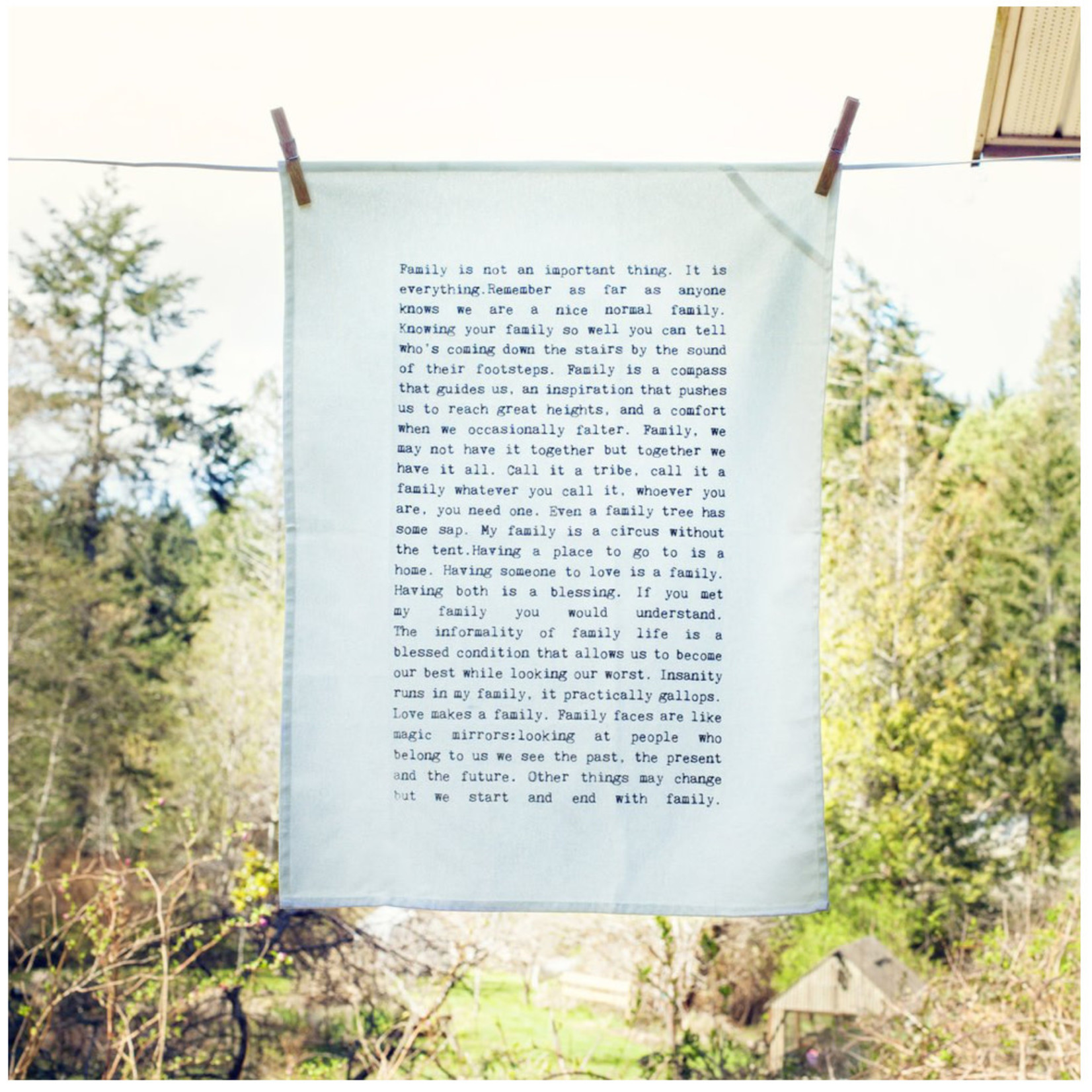cedar mountain studio Tea Towel
