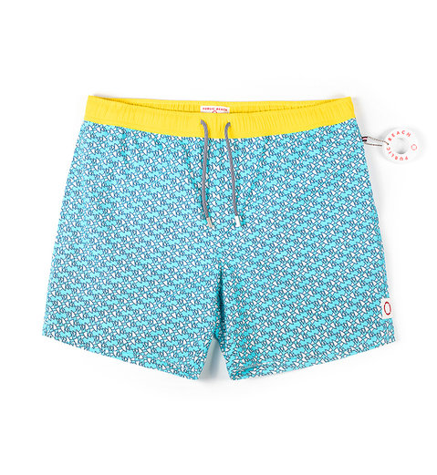 SHARK FIN - Turquoise