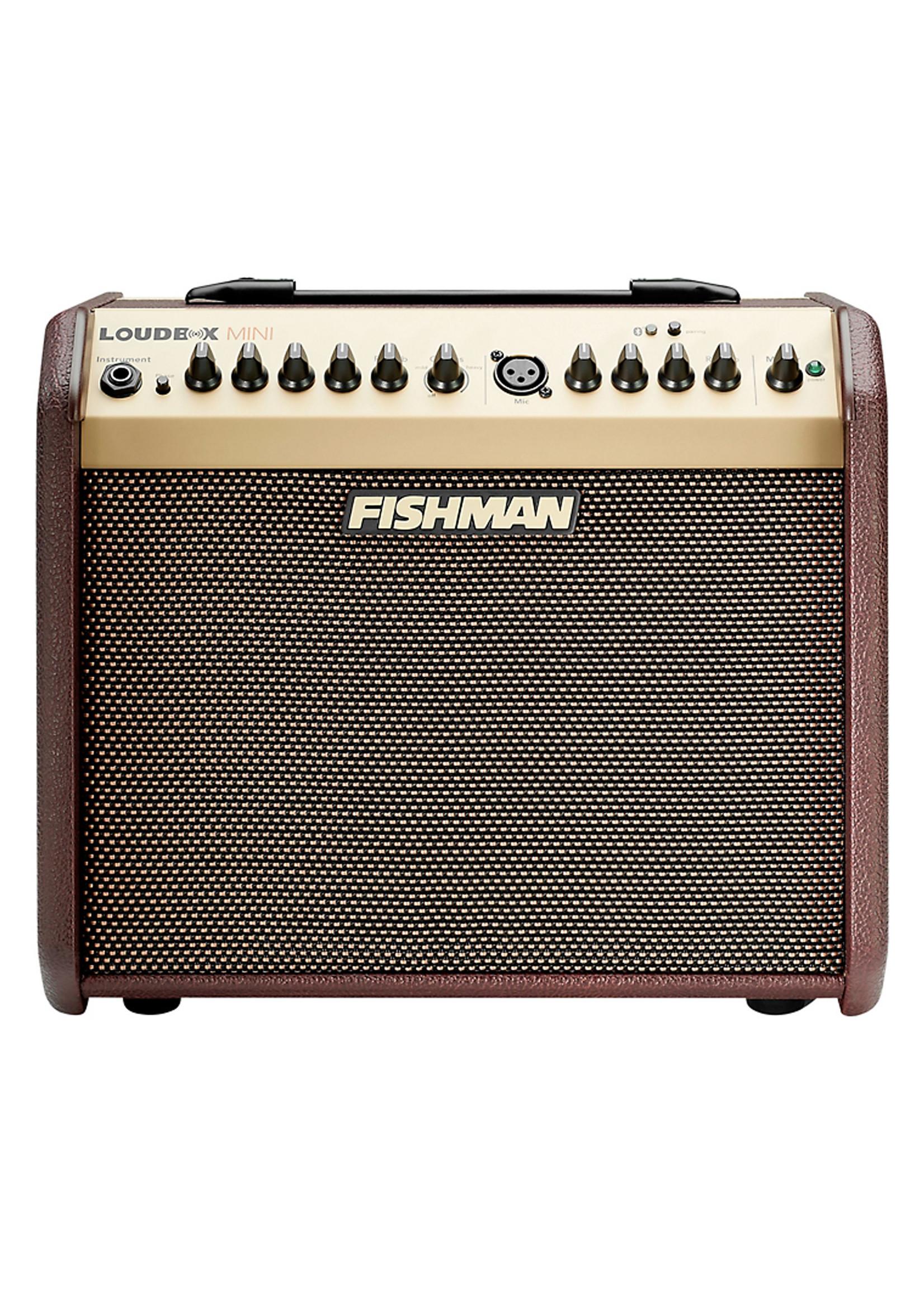 Fishman Loudbox Mini + Bluetooth