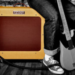 Bass Amplifiers & Cabinets