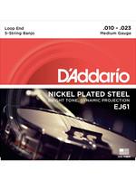 DAddario Fretted D'Addario EJ61 10-23