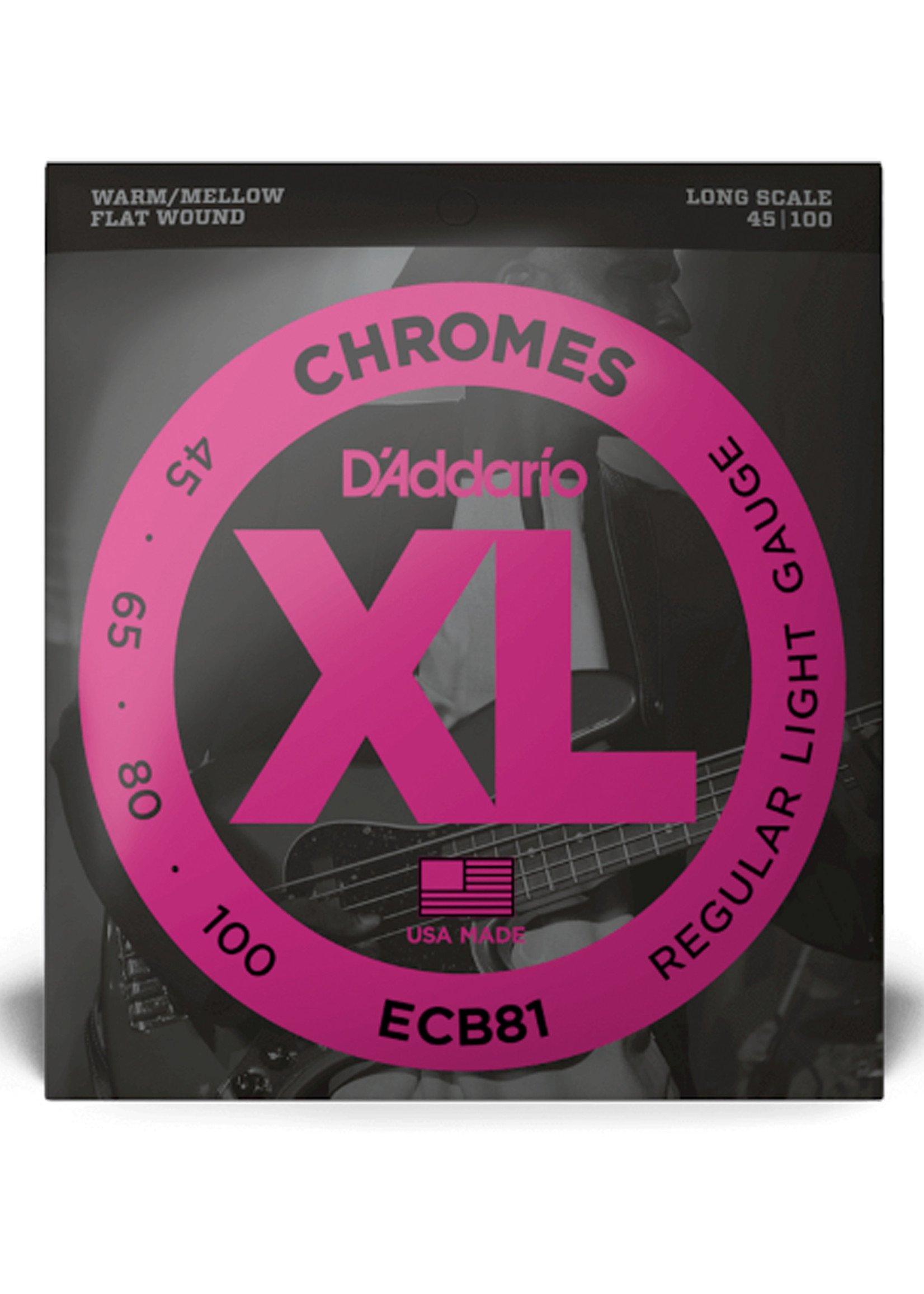 DAddario Fretted D'Addario ECB81 Chromes, 45-100