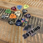 Z String Music Promo Pack - 12 Guitar Picks in Assorted Colors   Holo Sticker