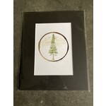 Craig Peterson Craig Peterson | pine tree coffee stain watercolor