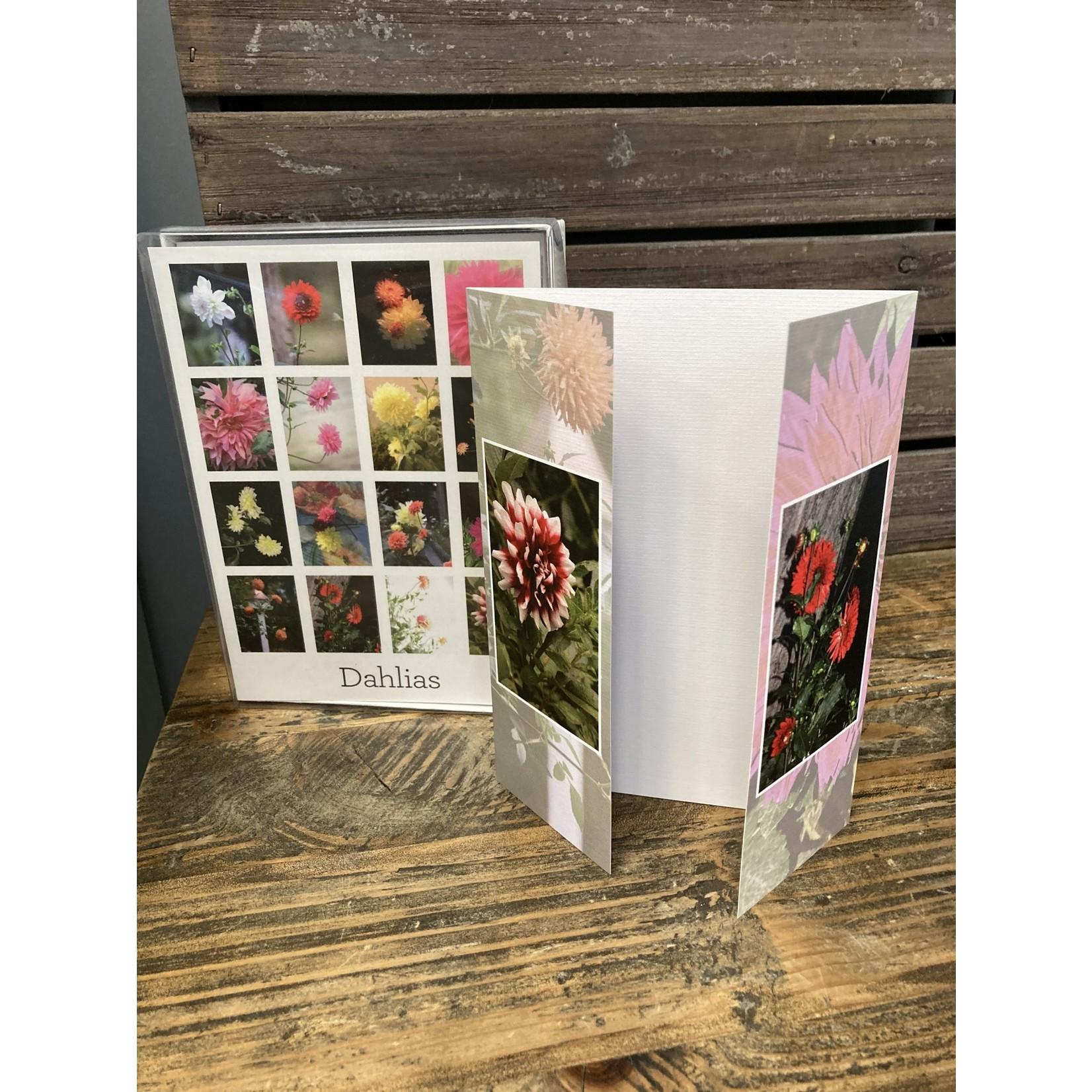 Jack Wolf Jack Wolf photography/ 12 Notecards & envelopes Dahlias
